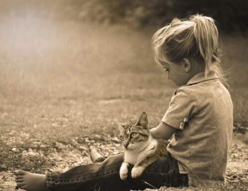 Essere animalisti in un mondo che non piace più