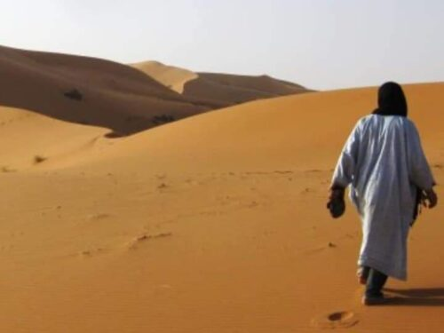 Soli nel deserto