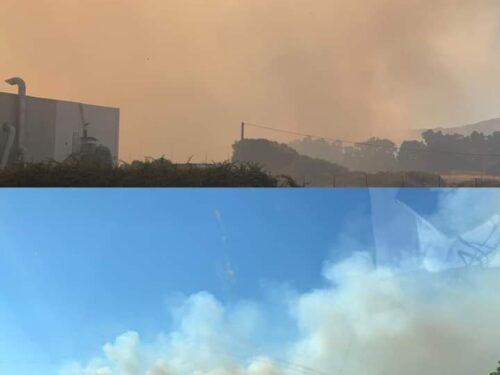 Brucia la Sardegna: la lotta per la prevenzione, solo una questione lasciata lì