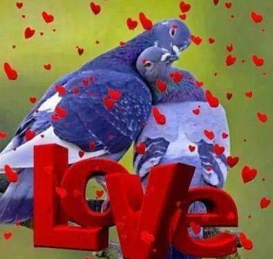 Il nostro amore in mille pezzi