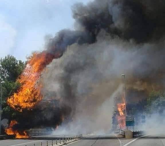 #Incendi, le fiamme avvolgono il pescarese