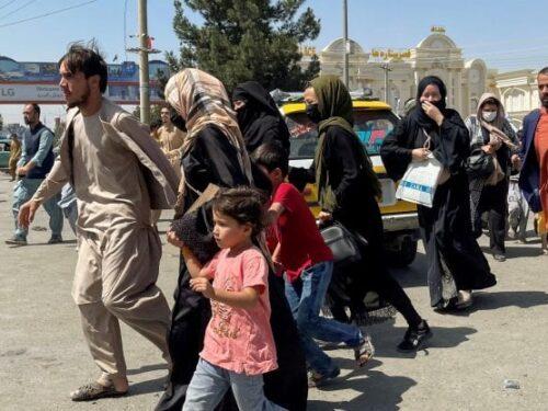 #Afghanistan. Dietro le rassicurazioni, il volto feroce dei talebani.  L'incubo per milioni di donne è ricominciato