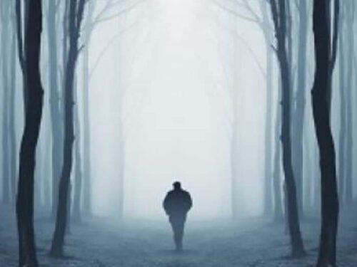 Passeggiando in un sogno